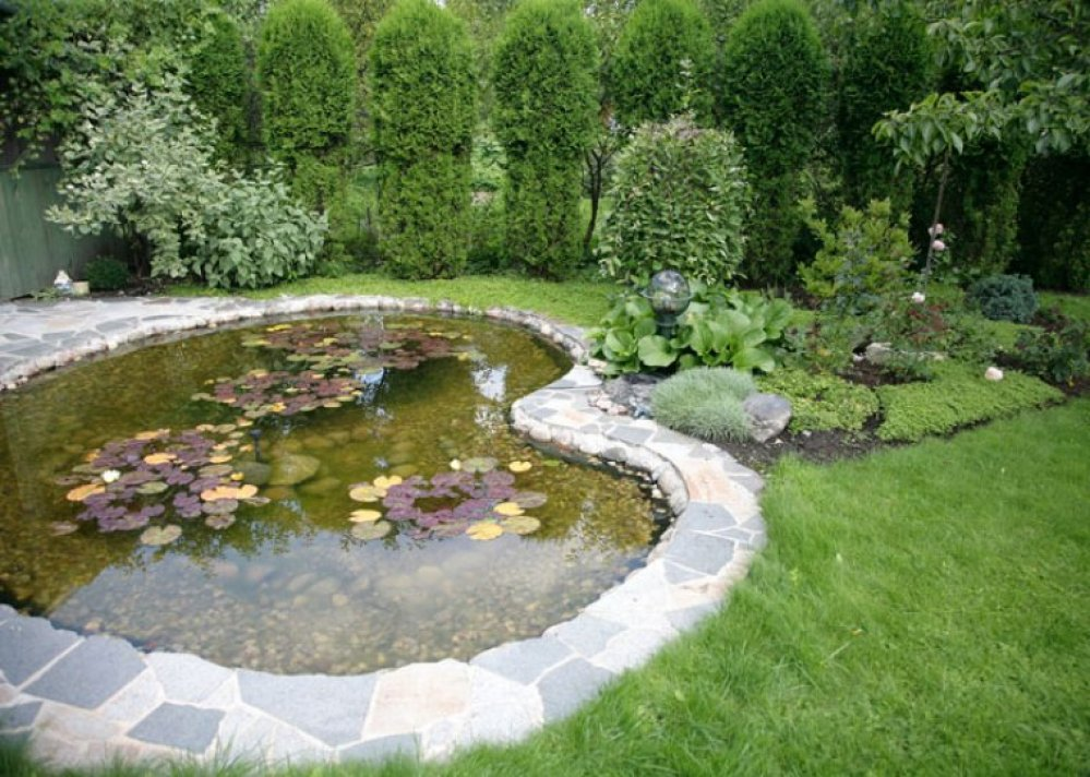 Voorbeelden vijvers kasbergen hoveniers - Foto van tuin vijver ...