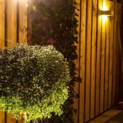 tuinexperts-Kasbergen-hoveniersbedrijf24